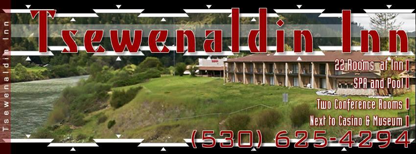 Tswenaldin Inn Banner